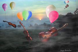 vol de violons