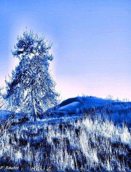 Bleu hiver