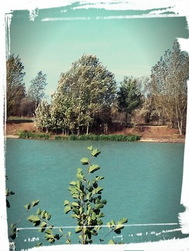 Lac Balat-David Montauban