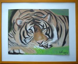 la sieste du tigre
