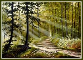 Faisceau lumineux en forêt