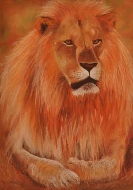 le king d'Etsoha