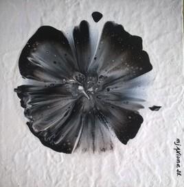 La pasion s'ouvre comme une fleur