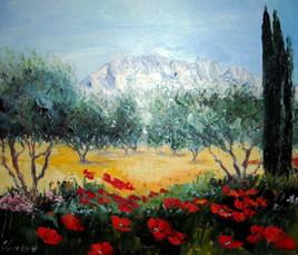 champs d'oliviers à la Sainte Victoire