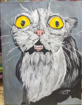 """""""crazy cat"""""""