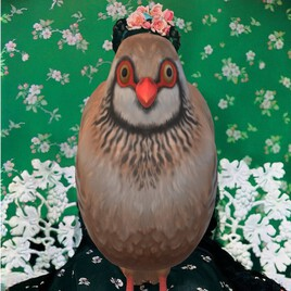 Frida l'oiseau