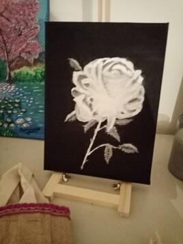 Rose blanche sur fond noir