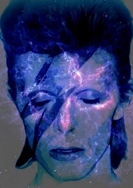 beau ..comme Bowie..