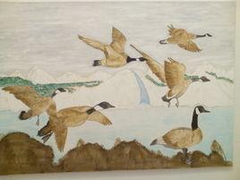 Migration oies sauvages