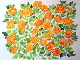Délice de roses 2