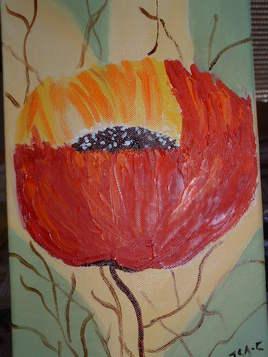 fleur des champs 1