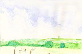 Prairie, moutons et ciel.