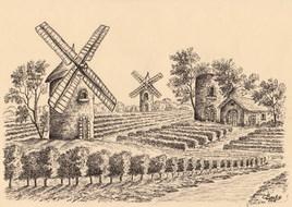 Entre vignes et moulins