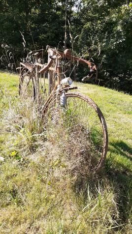 LA BICYCLETTE VERTE