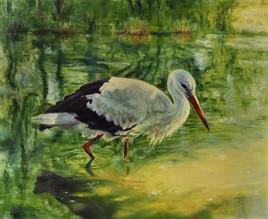 Stork sur le lac de la forêt.