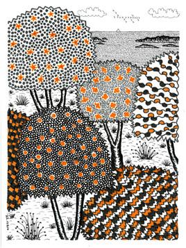 Piantarella, dessins de JCh - JCh.17.204