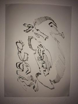 6. Hippocampe