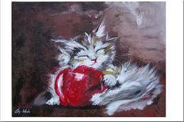 C'est ma pomme !!!