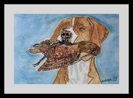 Le chien du chasseur