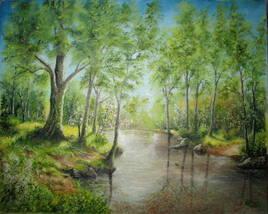 L'étang au milieu de la forêt