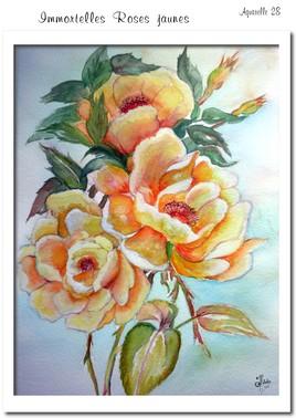 IMMORTELLES ROSES JAUNES ....(Aquarelle 28)