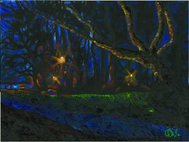 Les lumières du Morbihan, la nuit