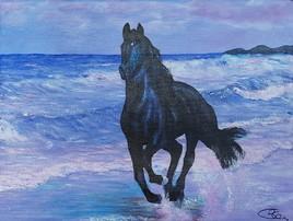 Le cheval sur la plage