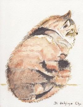 Mon chat (40x30)