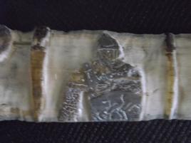 Ancêtre des Normands 3