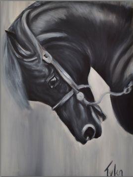 Quater Horse 2