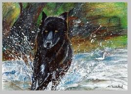Sur la terre des loups - voyage en Yakoutie