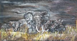 Éléphant sur bois