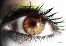 L'oeil, la vitrine de ton âme.