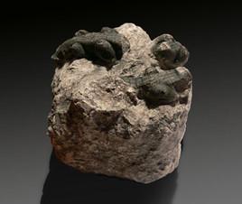 Fossile - Bonbon Crocodile