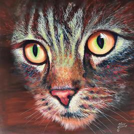Chat - Le regard magnifique de mon Chat (1m x 1m)