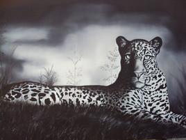 Repos du léopard avant la chasse