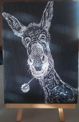 L'âne 1