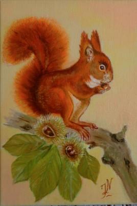 petit écureuil pour mon petit-fils