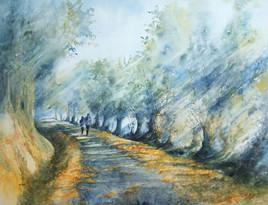 Balade route des luconnières