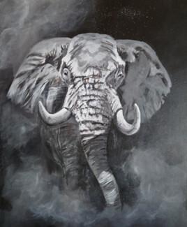 Eléphant 2