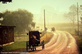 Amish - Pennsylvanie