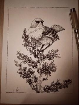L'oiseau de points