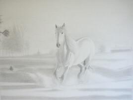 Un cheval blanc dans la neige par un matin embrumé
