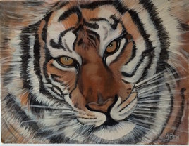 Tigre 2002