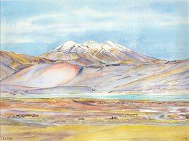 2019-11 Chili Atacama Salar de Talar