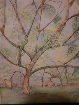 arbre de vie en été