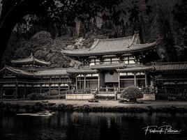 Byodo temple .2019