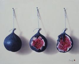 La vie d'une figue (22 x 27 cm) 3F