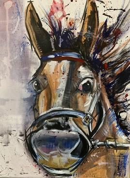 Le cheval du trèfle