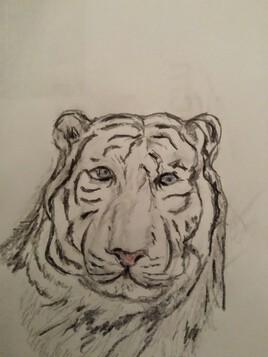 Tigreblanc